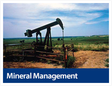 Mineral Management